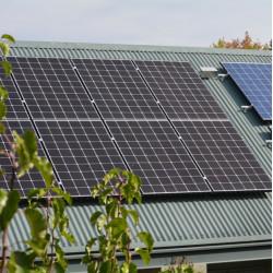 Panneau solaire- LG-330 Wc NEON 2- PHOTO 7